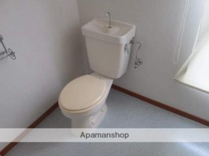 シンコウビル[2LDK/48.5m2]のトイレ