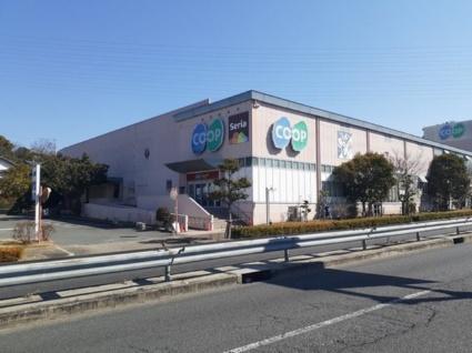 サンハイツ北六甲参番館[1LDK/42.37m2]の周辺5