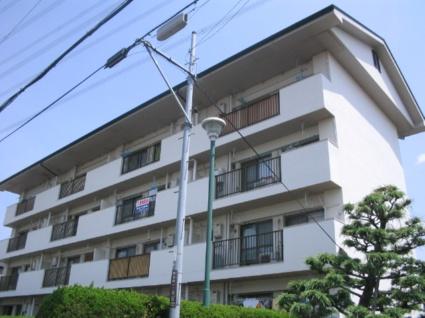 大阪府枚方市、樟葉駅徒歩44分の築44年 4階建の賃貸マンション