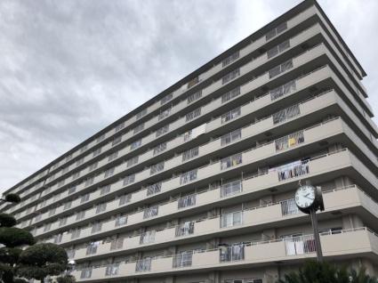 大阪府三島郡島本町、島本駅徒歩12分の築34年 11階建の賃貸マンション