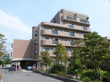大阪府八尾市、八尾駅徒歩28分の築21年 6階建の賃貸マンション