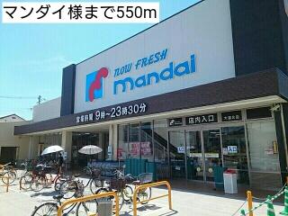 マンダイ様 550m