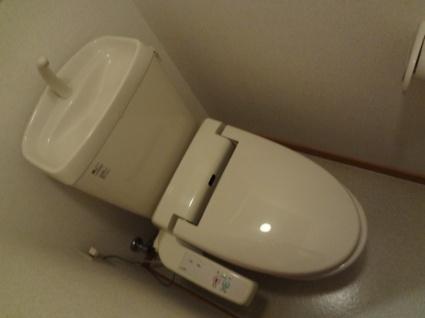 シムリーミナⅡ[1R/25.3m2]のトイレ