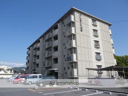 大阪府門真市、萱島駅徒歩30分の築31年 5階建の賃貸マンション