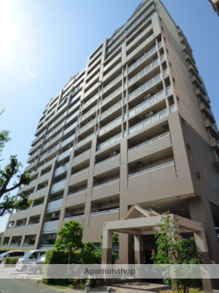 大阪府大阪市東成区、放出駅徒歩20分の築19年 10階建の賃貸マンション
