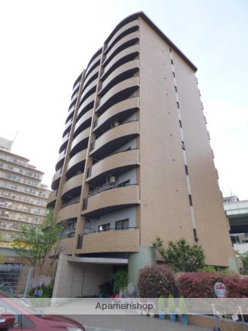 大阪府東大阪市、高井田中央駅徒歩6分の築19年 11階建の賃貸マンション