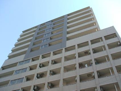 大阪府大阪市中央区、近鉄日本橋駅徒歩3分の築11年 14階建の賃貸マンション