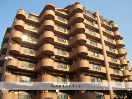 大阪府大阪市平野区、矢田駅徒歩17分の築19年 9階建の賃貸マンション