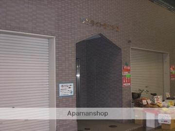 大阪府大阪市阿倍野区、昭和町駅徒歩10分の築19年 3階建の賃貸マンション