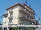大阪府堺市中区、上野芝駅徒歩33分の築31年 5階建の賃貸マンション