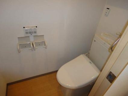 メゾン・オランジュ[1K/31.84m2]のトイレ