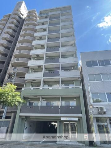 広島県広島市中区、胡町駅徒歩7分の築8年 11階建の賃貸マンション