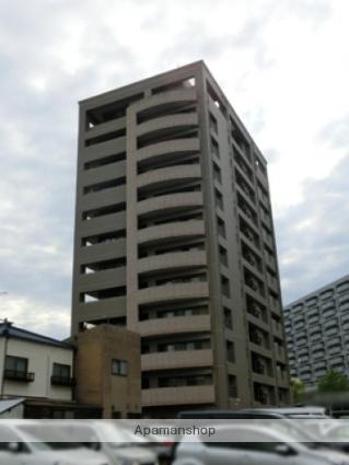 広島県広島市中区、新白島駅徒歩3分の築13年 12階建の賃貸マンション