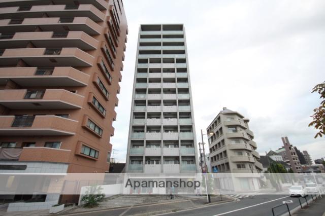 広島県広島市南区、猿猴橋町駅徒歩11分の築9年 14階建の賃貸マンション