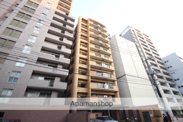 広島県広島市中区、広島駅徒歩9分の築25年 11階建の賃貸マンション