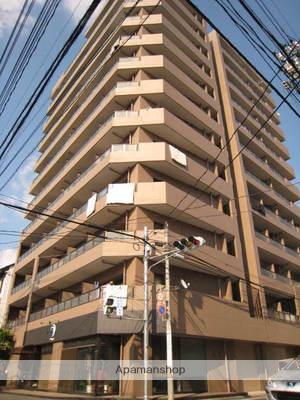 広島県広島市西区、天満町駅徒歩4分の築24年 12階建の賃貸マンション