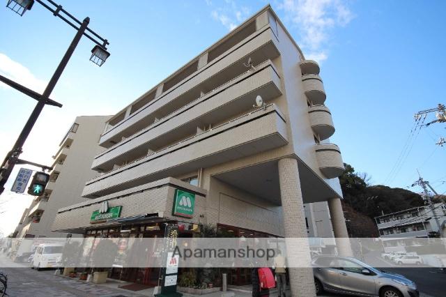 広島県広島市南区、比治山橋駅徒歩12分の築27年 5階建の賃貸マンション