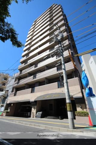 広島県広島市中区、本通駅徒歩10分の築19年 14階建の賃貸マンション
