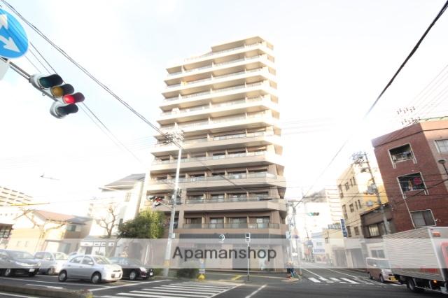 広島県広島市西区、天満町駅徒歩4分の築25年 12階建の賃貸マンション