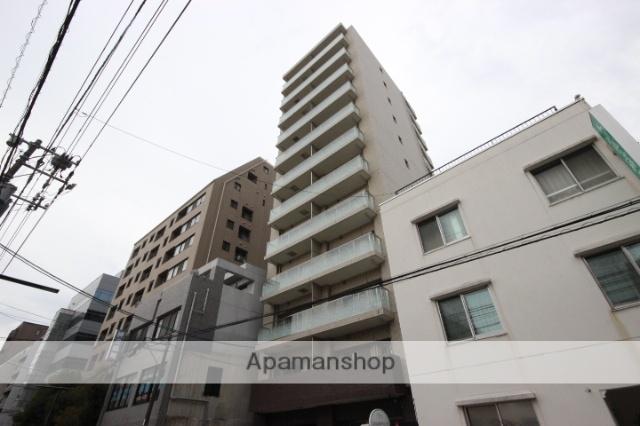 広島県広島市中区、胡町駅徒歩5分の新築 12階建の賃貸マンション