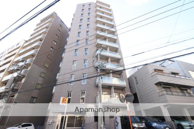 広島県広島市中区、市役所前駅徒歩12分の築4年 12階建の賃貸マンション