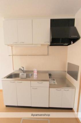 リーフグリーン ハイツⅢ[1LDK/42.98m2]のキッチン