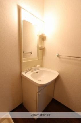 ルミナス55[2SLDK/61.74m2]の洗面所