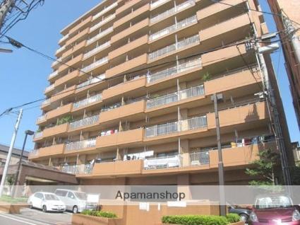 愛媛県松山市、土橋駅徒歩8分の築12年 11階建の賃貸マンション