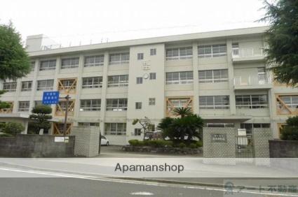 愛媛県松山市中村3丁目[1K/18.18m2]の周辺2