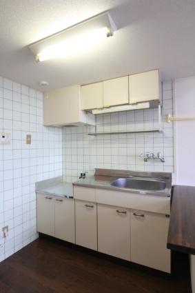 メゾン幸PARTⅡ[1R/22.2m2]のキッチン