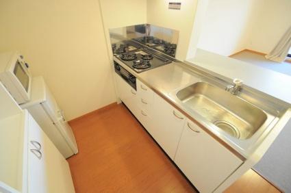 レオパレスグランドカメリアⅦ[1K/31.05m2]のその他部屋・スペース3