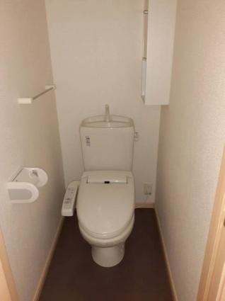 アンジュフランD[2DK/43.86m2]のトイレ