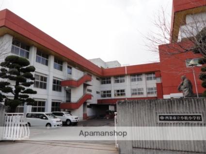 小松町新屋敷甲29 貸家[3DK/61.02m2]の周辺4