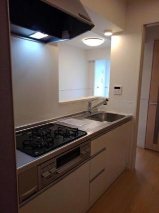 プラシード カーサ Ⅷ[1LDK/50.06m2]のキッチン