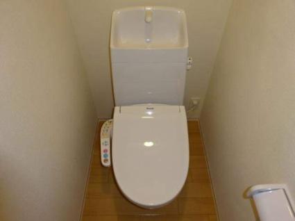 Rion Ⅱ[1LDK/42.34m2]のトイレ