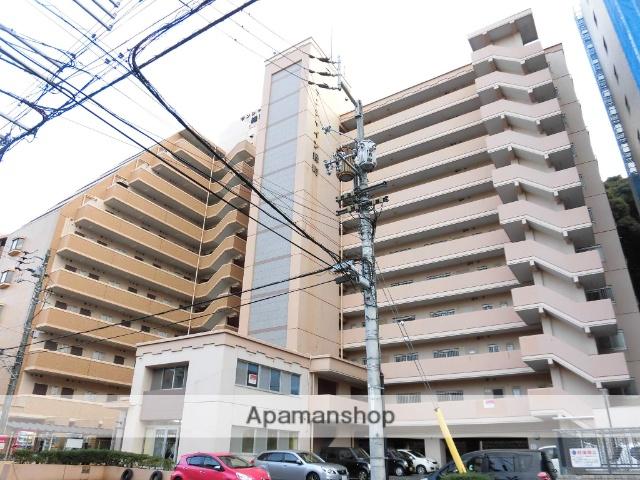 愛媛県松山市、平和通1丁目駅徒歩9分の築30年 11階建の賃貸マンション
