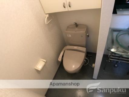 アリスト・ステーション・ピラー[1DK/30.99m2]のトイレ
