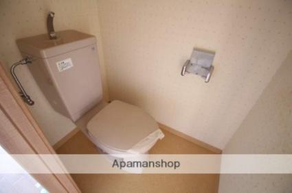 S・TAGE(エステージ)[1K/30m2]のトイレ