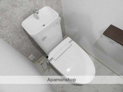 デザイナーズ ザ・レトロ[1DK/25.2m2]のトイレ