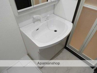 デザイナーズ ザ・レトロ[1DK/25.2m2]の洗面所