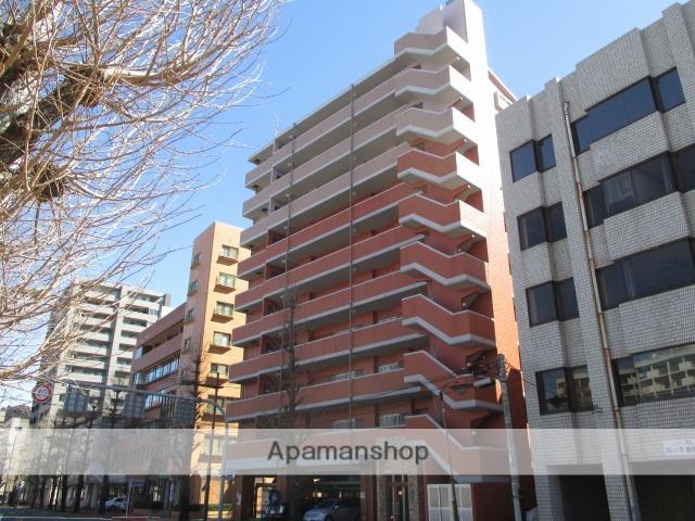 熊本県熊本市中央区、新水前寺駅徒歩5分の築9年 10階建の賃貸マンション