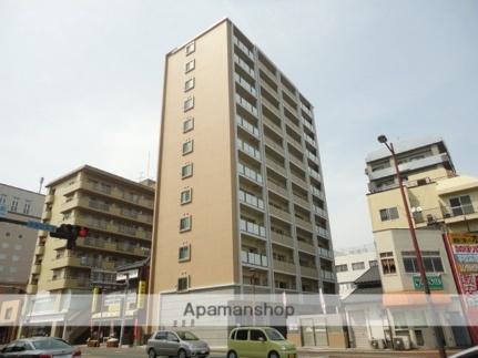 国立 病院 機構 熊本 医療 センター