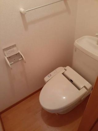 コゥジィーコートC[2LDK/58.86m2]のトイレ