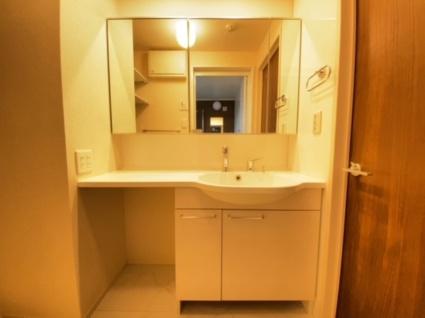 熊本県熊本市北区大窪1丁目[1LDK/43.93m2]の洗面所