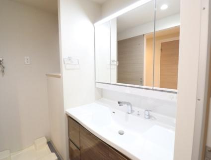 熊本県熊本市中央区九品寺2丁目[1LDK/36.72m2]の洗面所