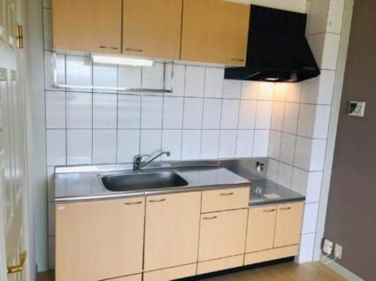 アクアB棟[2DK/58.4m2]のキッチン1