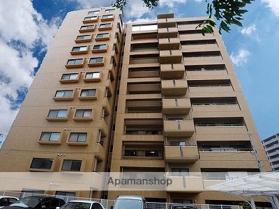 熊本県熊本市中央区の築27年 12階建の賃貸マンション