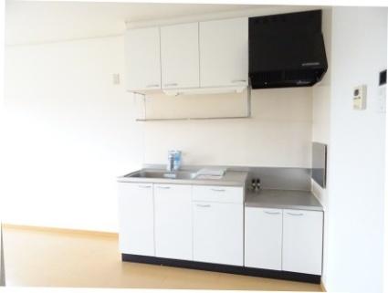 ストーン フィールドⅡA[2LDK/54.85m2]のキッチン