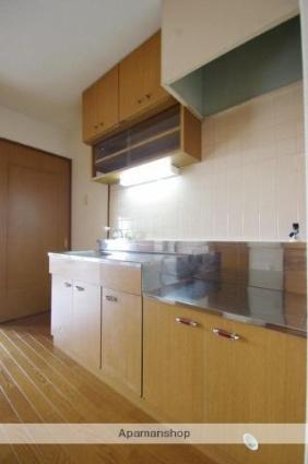 熊本県熊本市中央区薬園町[1LDK/35.1m2]のキッチン2