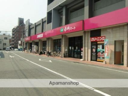 熊本県熊本市中央区新町4丁目[1K/32m2]の周辺1
